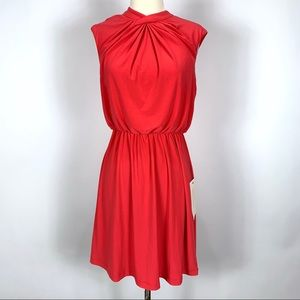 NEW Adriana Papell fit and flare dress